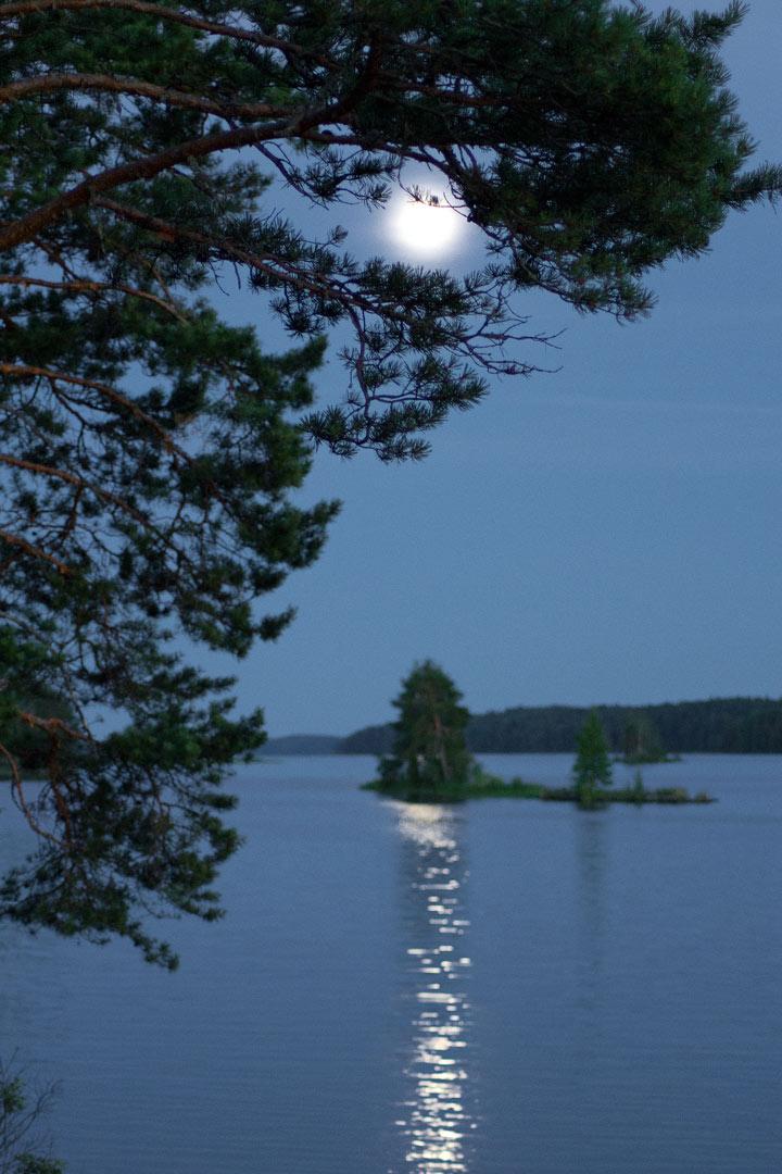 Онежское озеро губа святуха